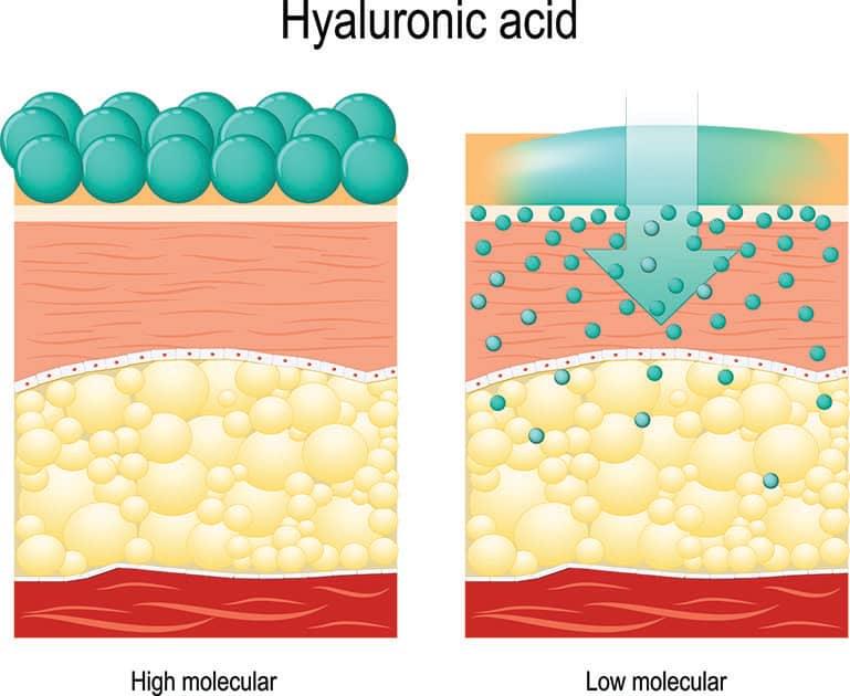 illustration of hyaluronic acid