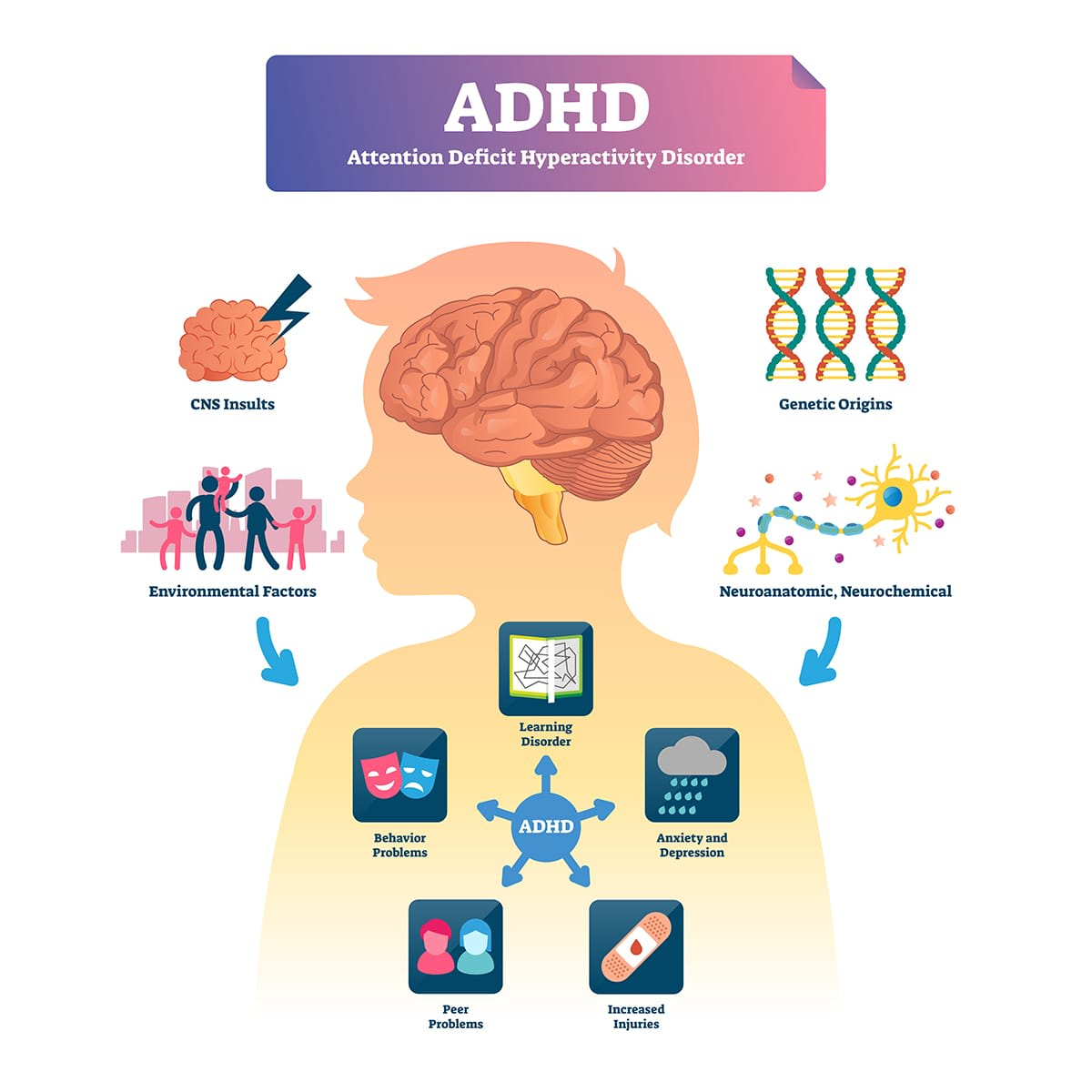 diagram of causes and effects of adhd