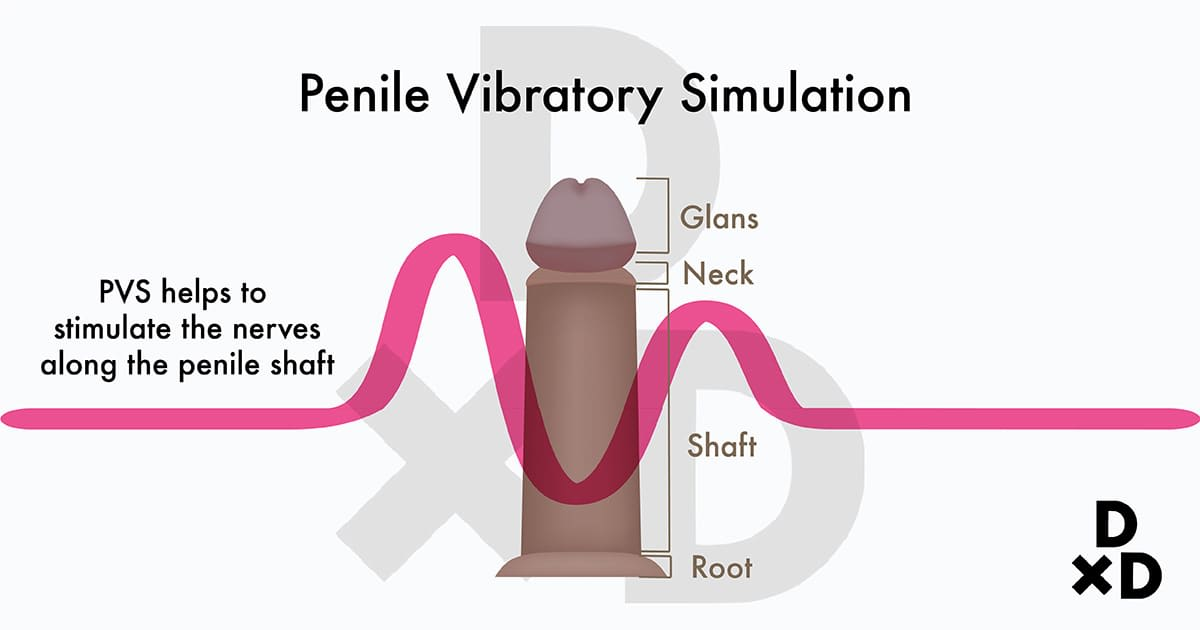 illustration on how penile vibratory simulation works on penile shaft