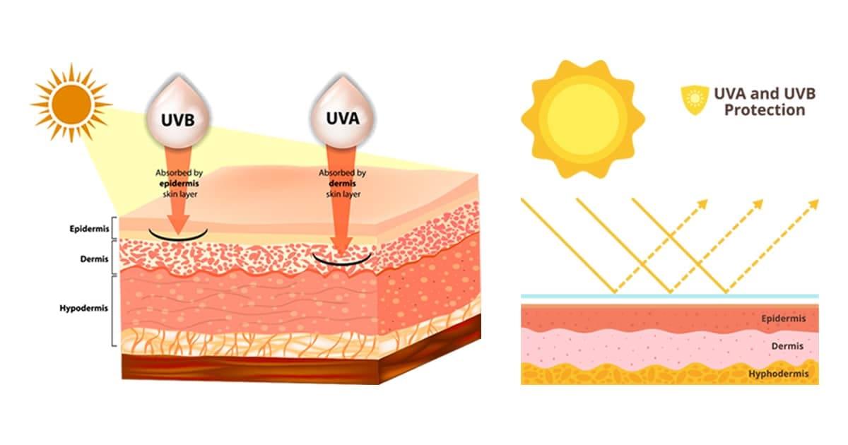 protect-sun-illustration