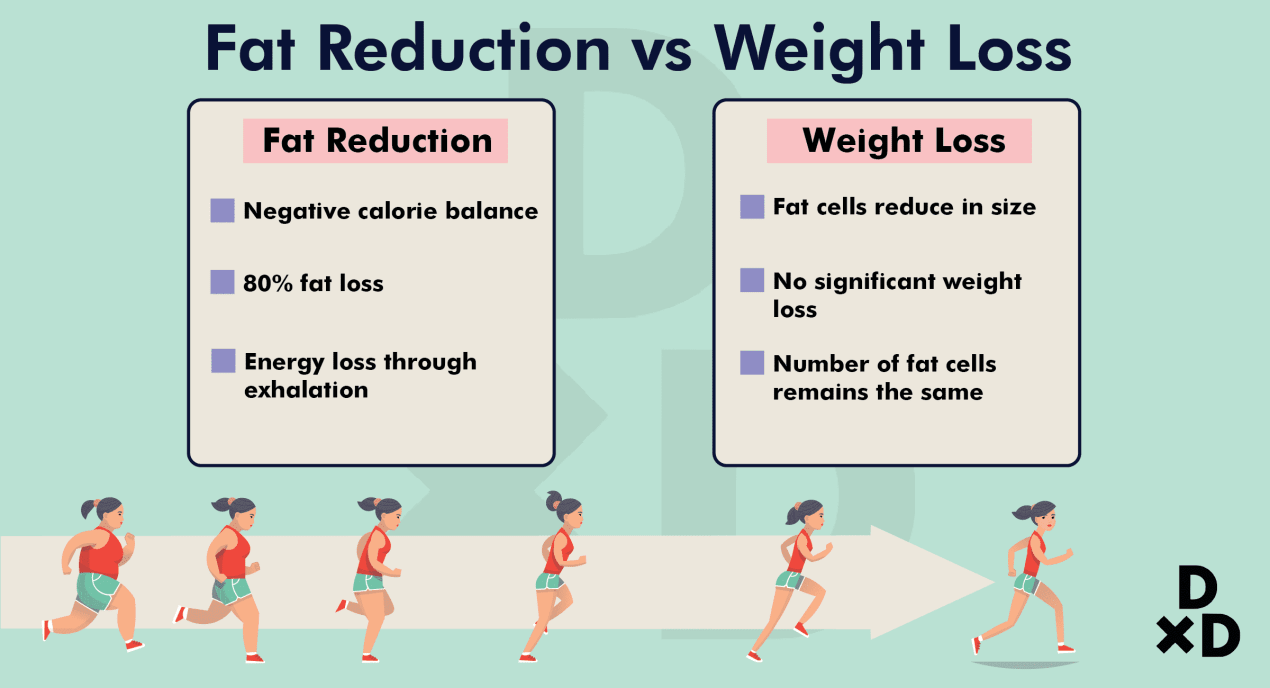 fat-reduce-weight-loss