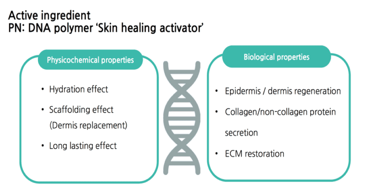 DNA-polymer-active-ingredient