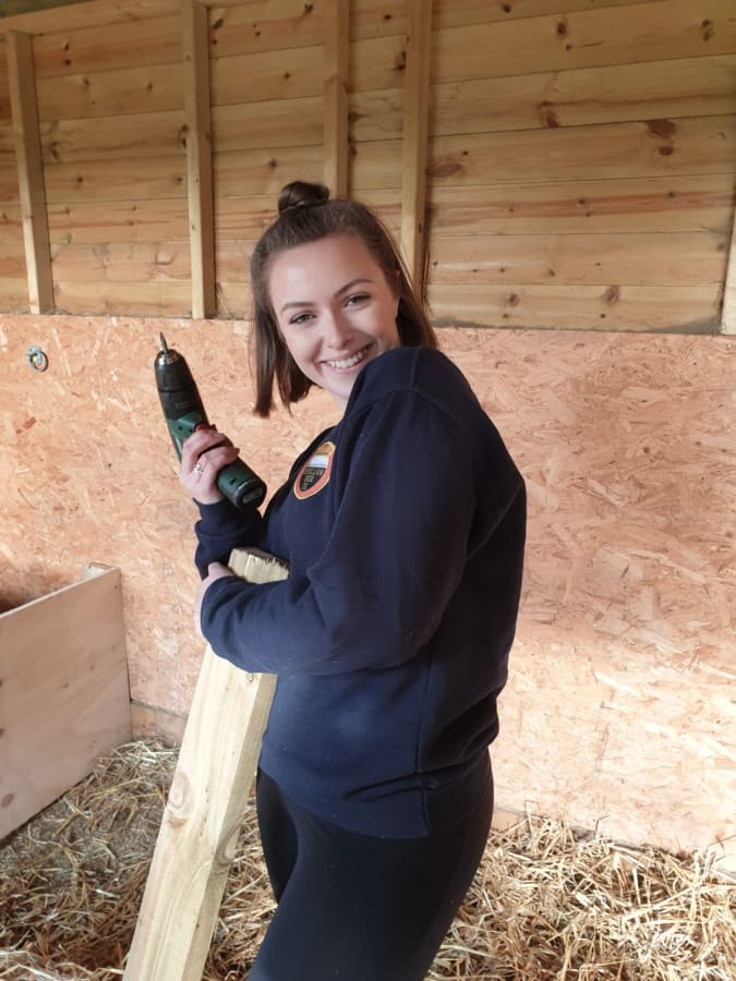 image Bethan building donkey feeders on her charity volunteer day!