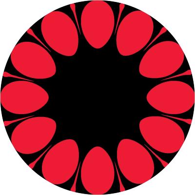 Razzbri Digital logo