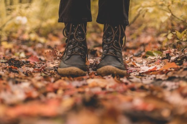 boots-in-autumn-leaves_4460x4460