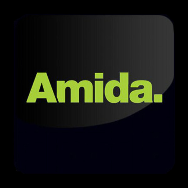 Amida Recruitment logo