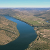 Between Vineyards and River