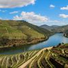 One Day Douro