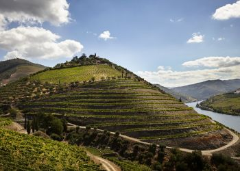 Forbes Magazine highlights Douro