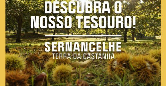 Festa da Castanha 2020 - Sernancelhe
