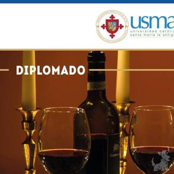 Diplomado en Vinos / Sommeliers