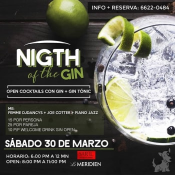 The Night of the Gin