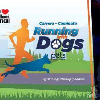 Carrera-Caminata Running With Dogs