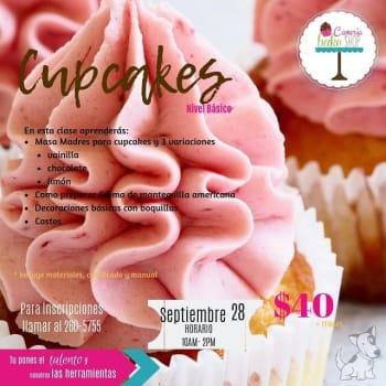 Cupcakes Nivel Básico