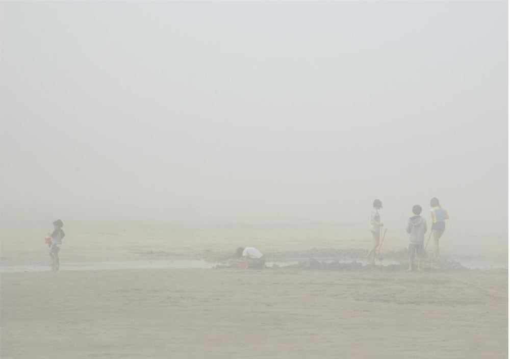 Dans la brume - Michel Tréhet