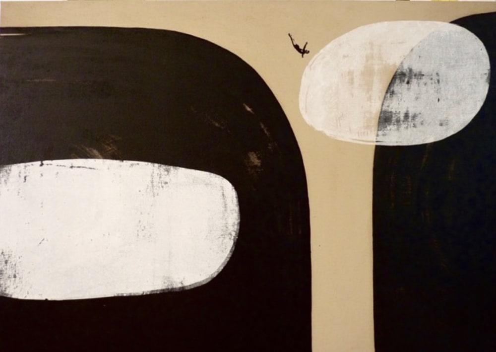 Plongeon dans les nuages - Valérie Betoulaud