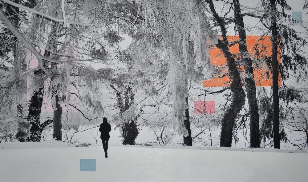 Forêt enneigée  - Victoire d'Harcourt