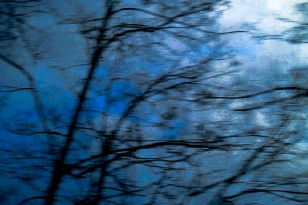 Crépuscule  - Catherine  Bisiaux