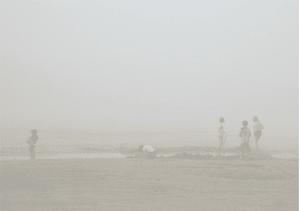 Dans la brume de Michel Tréhet