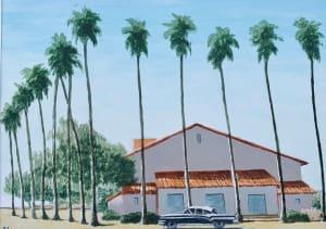 Les palmiers de Dominique Lecomte