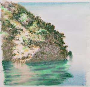L'île  de Dominique Lecomte