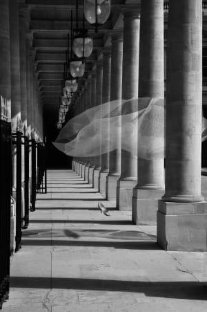 La Parisienne au Palais Royal - La suite de Michel Tréhet