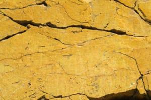 jaune de Catherine  Bisiaux
