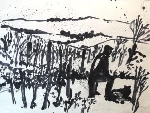 Dans les vignes, observation de Nathalie  Grenier