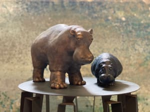 Les Hippos  de Coups  de coeur