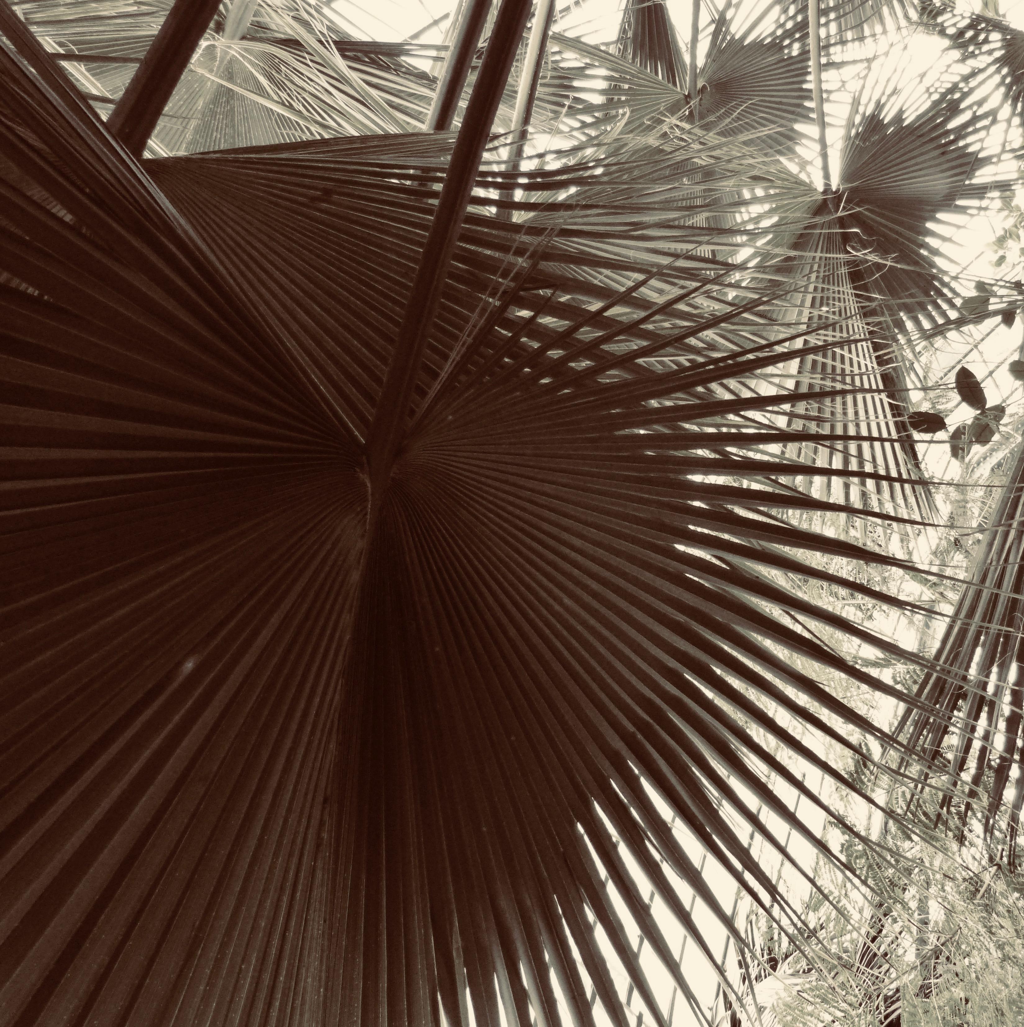 Paradis terrestre Exposition collective