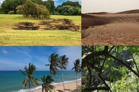 Biodiversitas (Keanekaragaman Hayati)