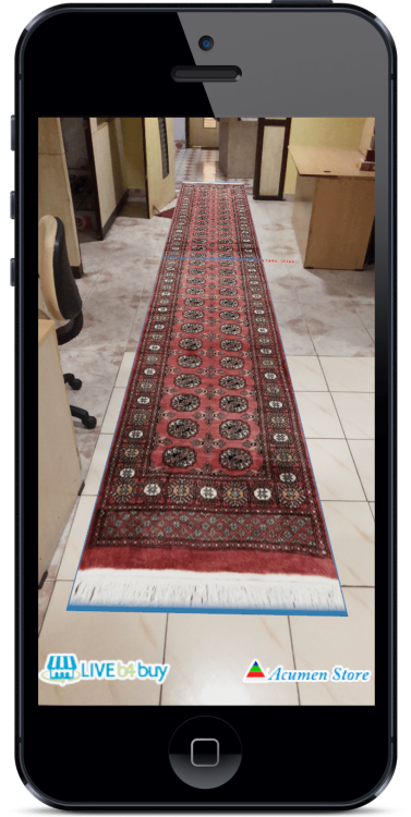 Rug AR View