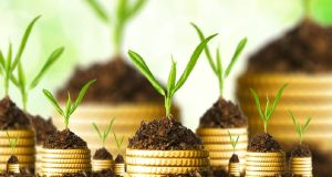 robobanking, online investment advisory platform, financial advisory platform