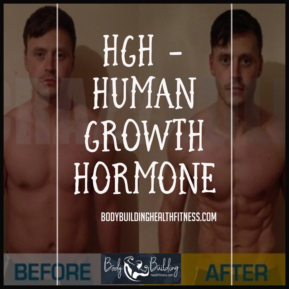 agapotabiblia: Bodybuilding Supplements Uk