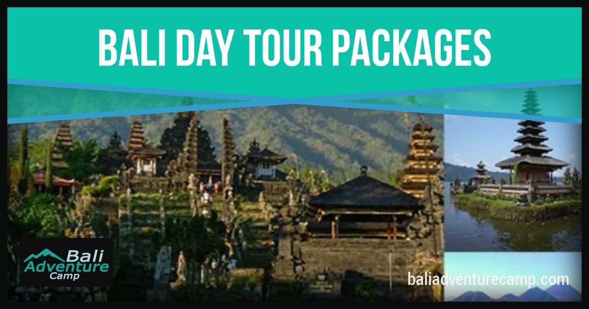 Bali Day Tours Packages