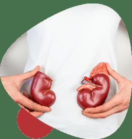 Kidney Transplant in Delhi