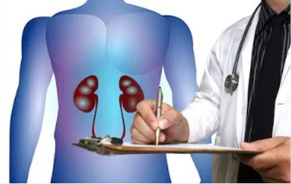 nephrologist in Delhi