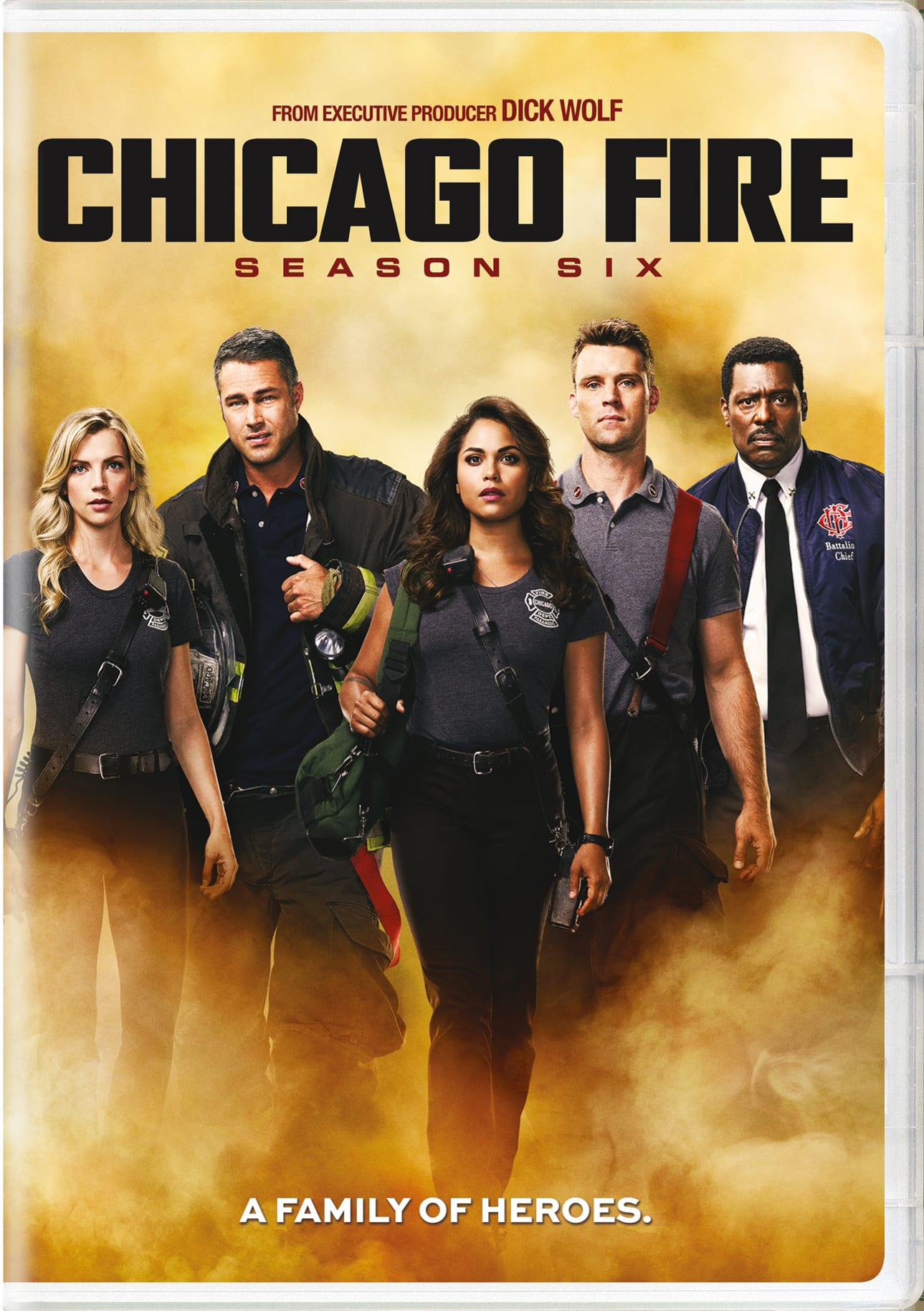 Chicago Fire: Season Six [DVD]