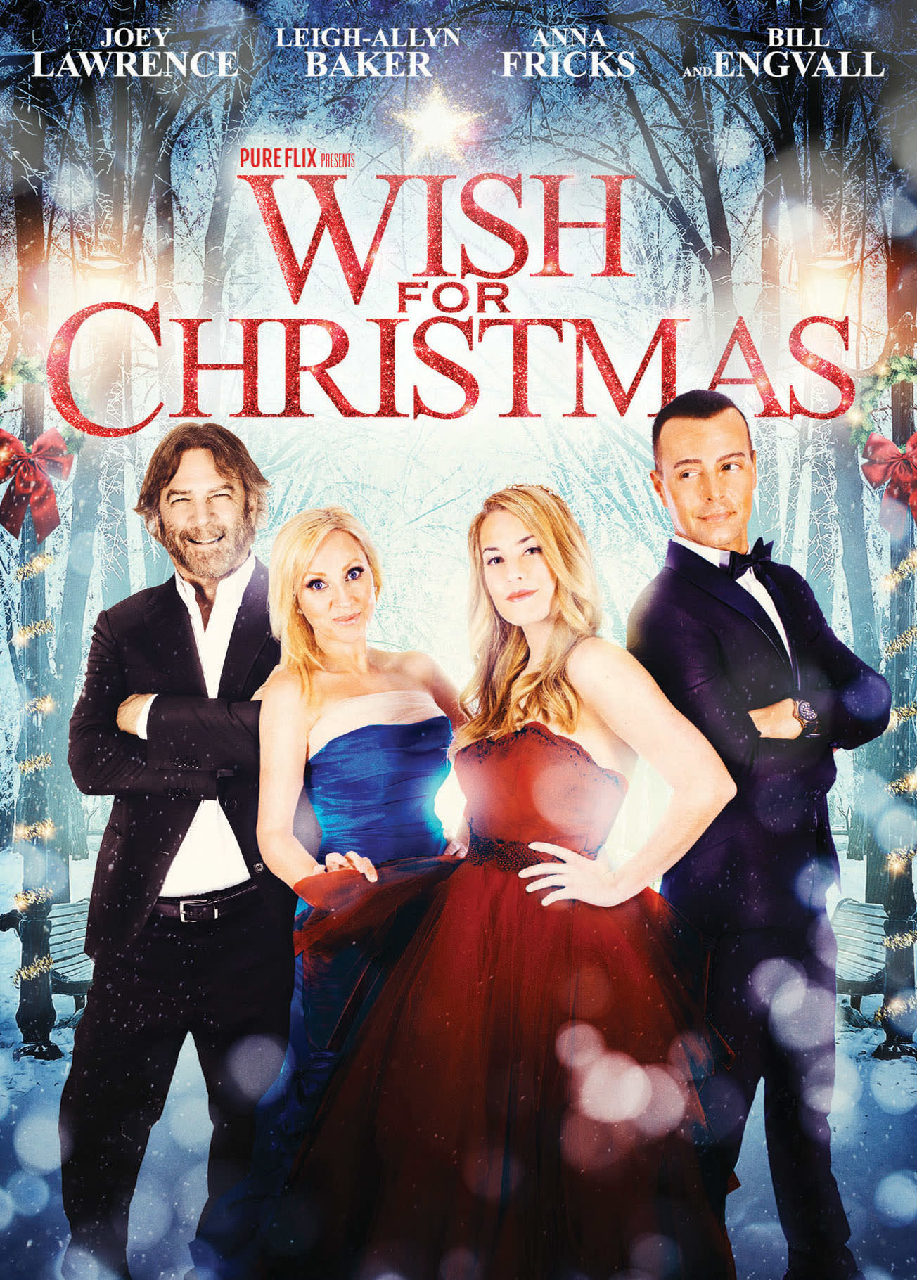 Wish for Christmas [DVD]