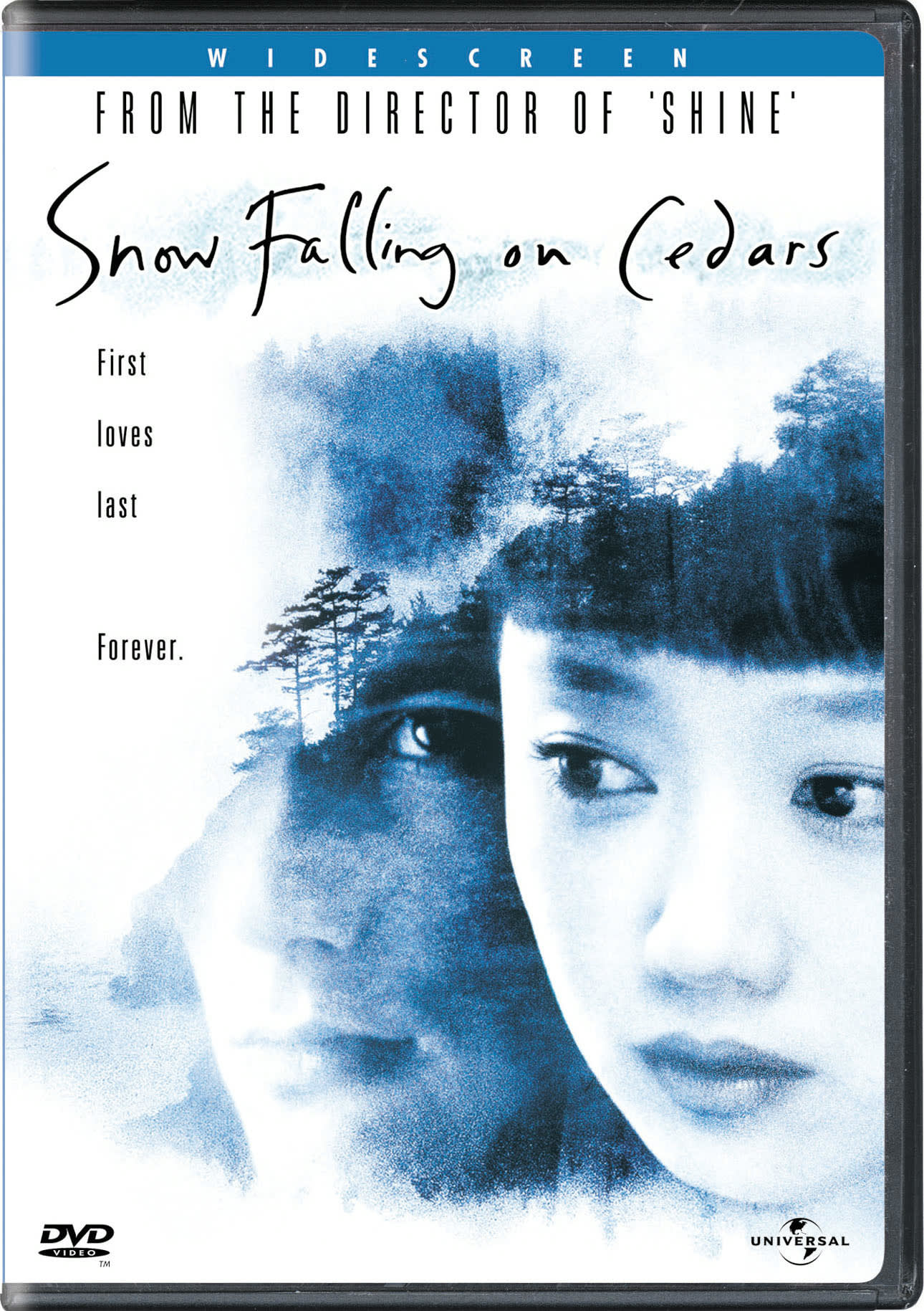 Snow Falling On Cedars [DVD]