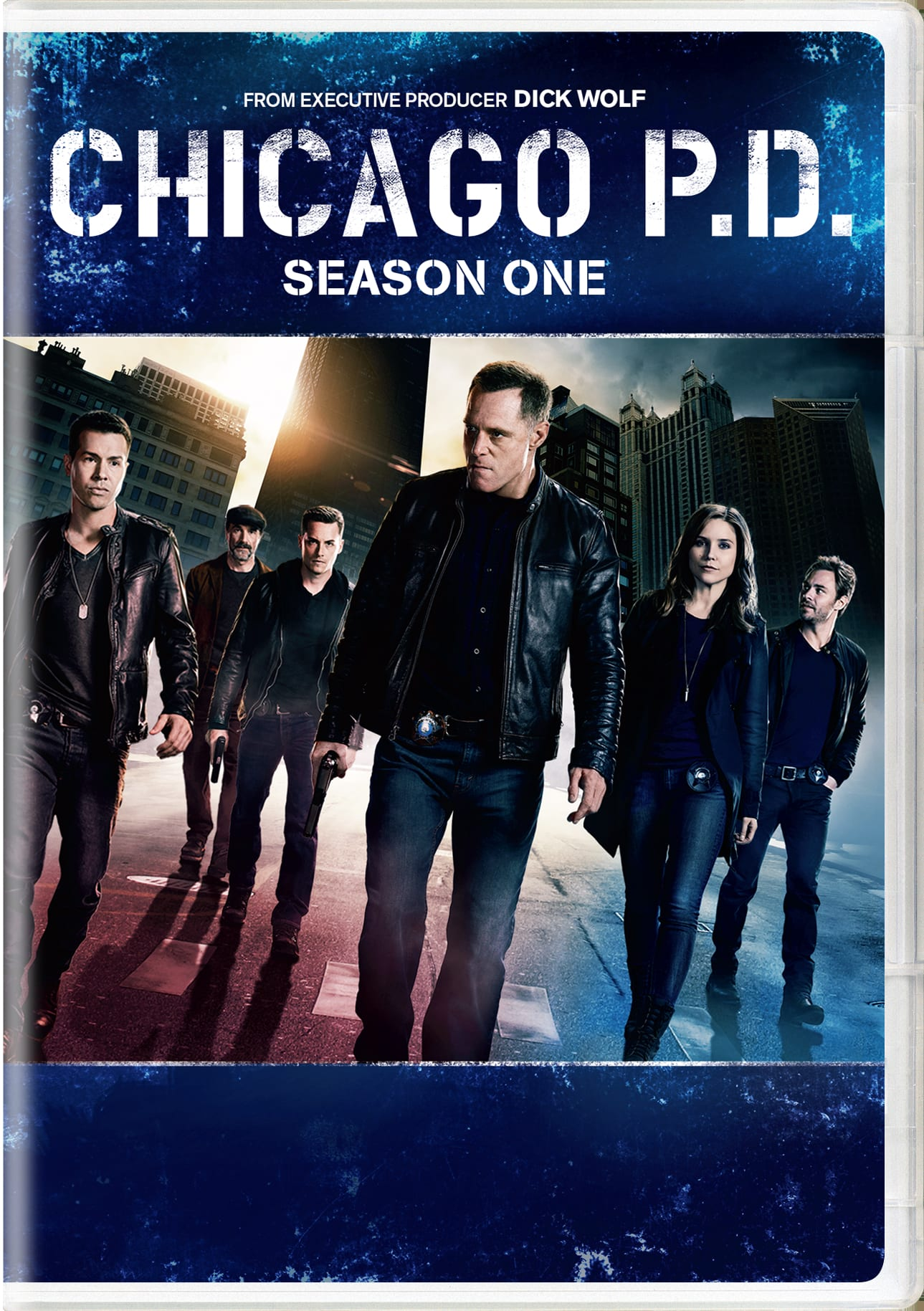 Chicago P.D.: Season One [DVD]