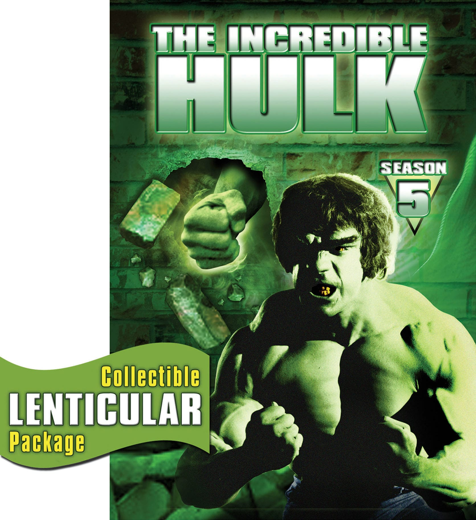 The Incredible Hulk: The Complete Fifth Season (2008) [DVD]