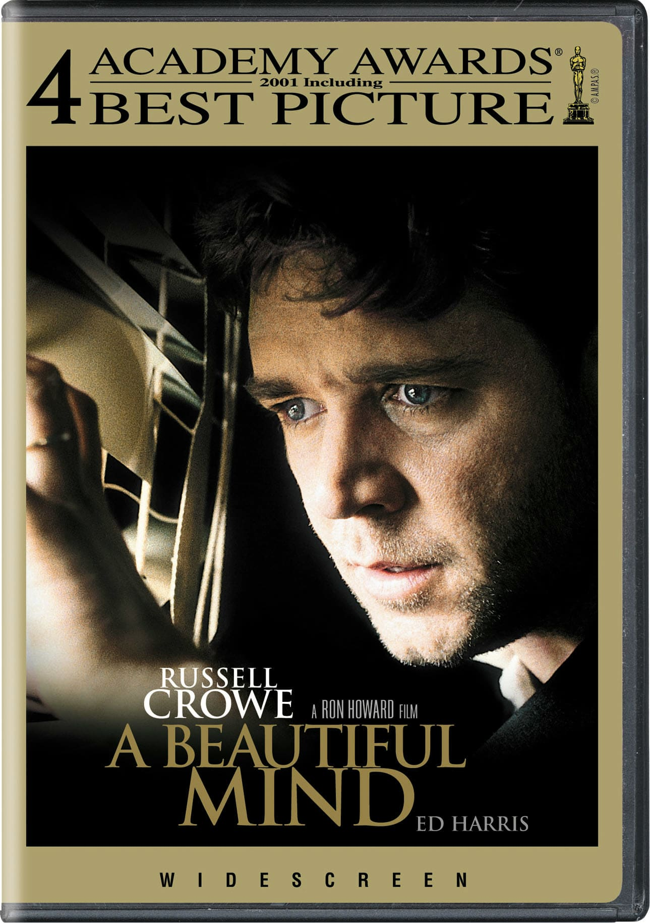 A Beautiful Mind [DVD]