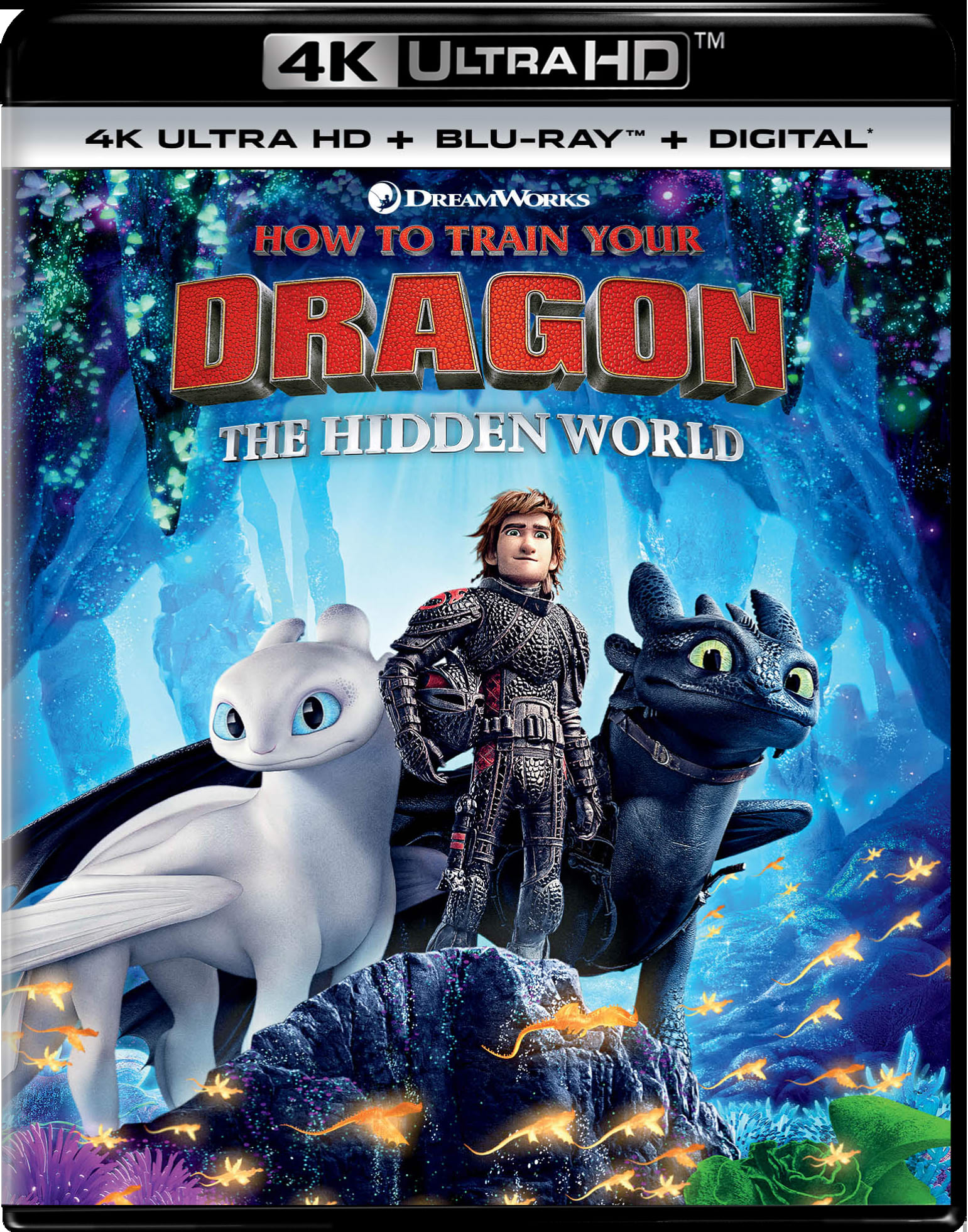 How to Train Your Dragon - The Hidden World (4K Ultra HD) [UHD]
