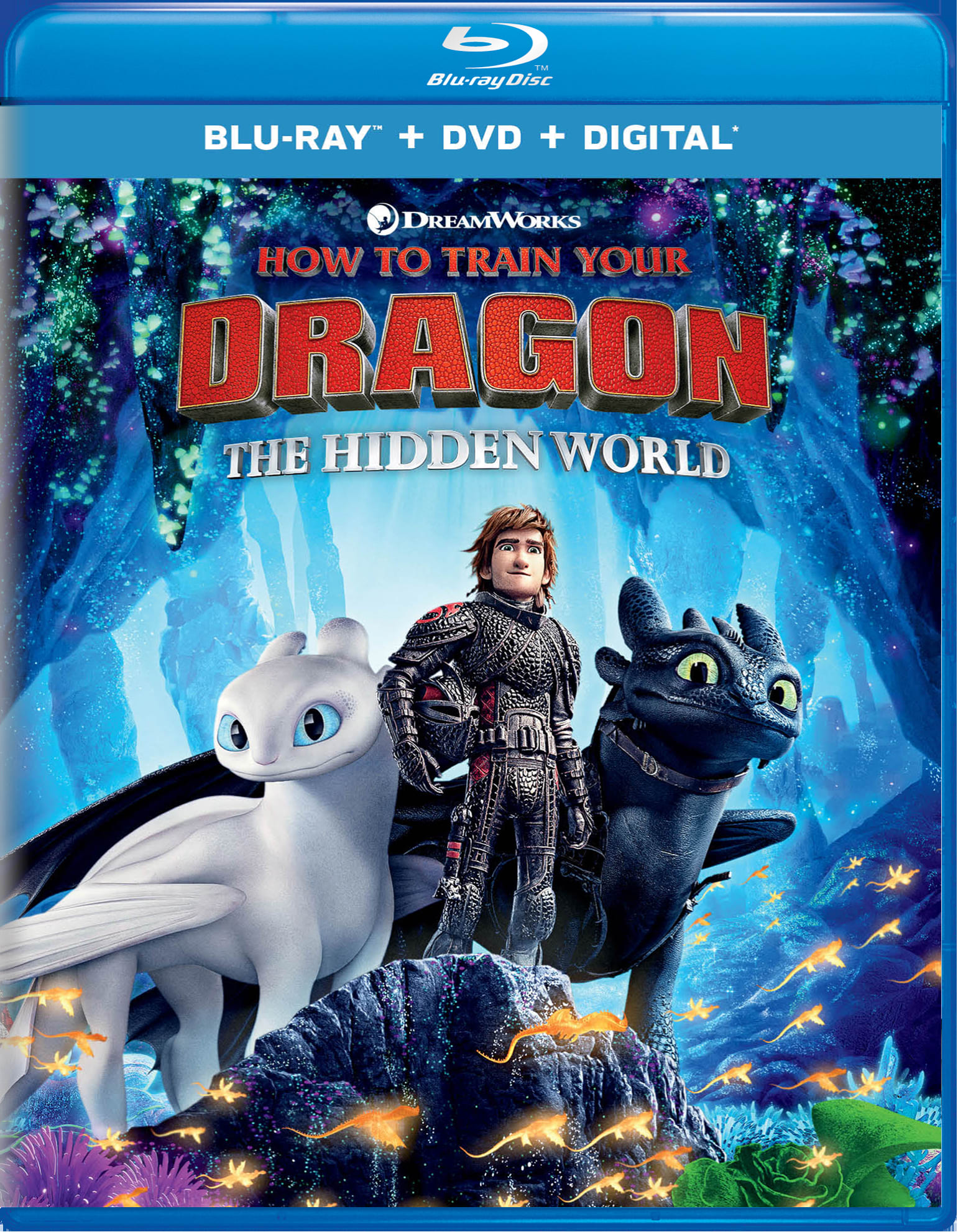 How to Train Your Dragon - The Hidden World (DVD + Digital) [Blu-ray]