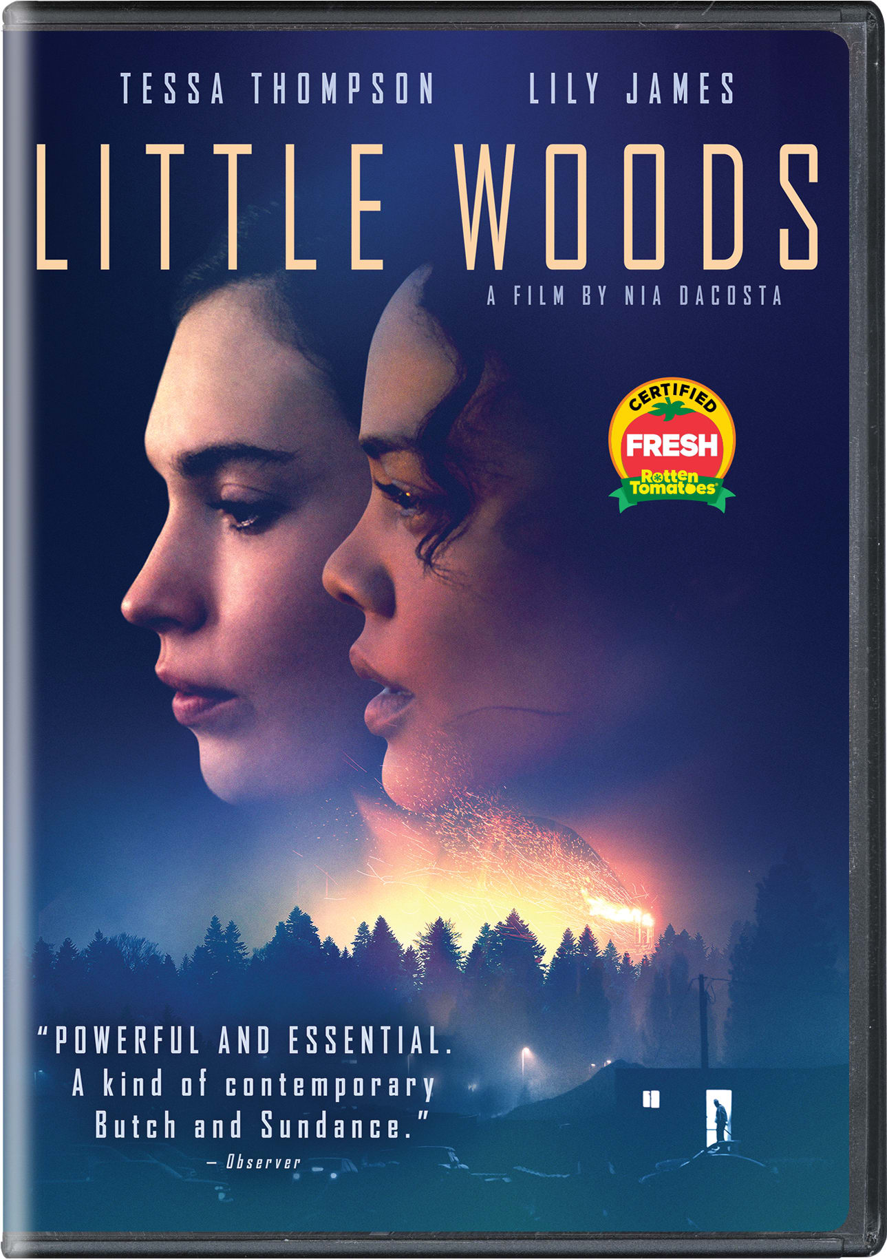 Little Woods [DVD]