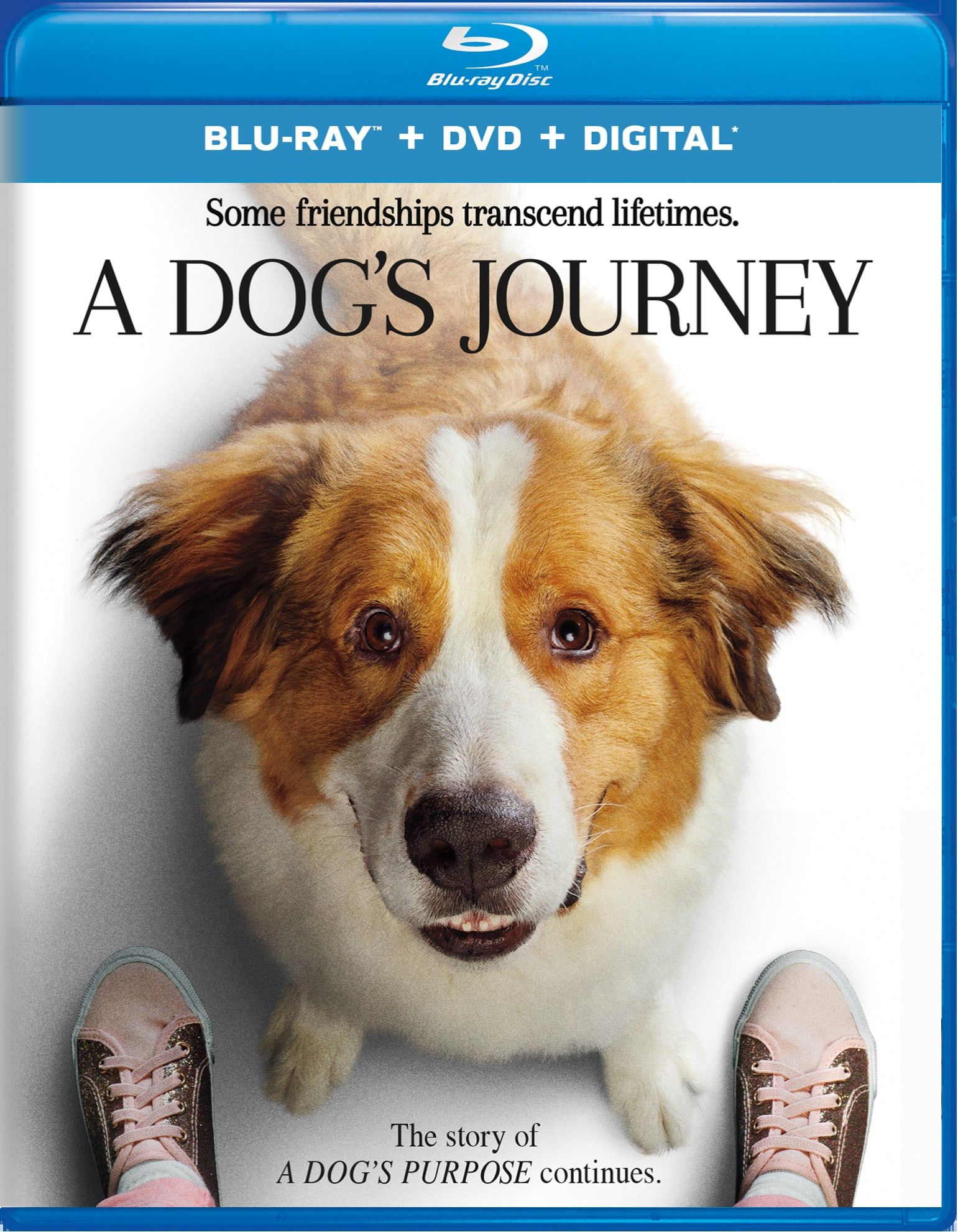 A Dog's Journey (DVD + Digital) [Blu-ray]