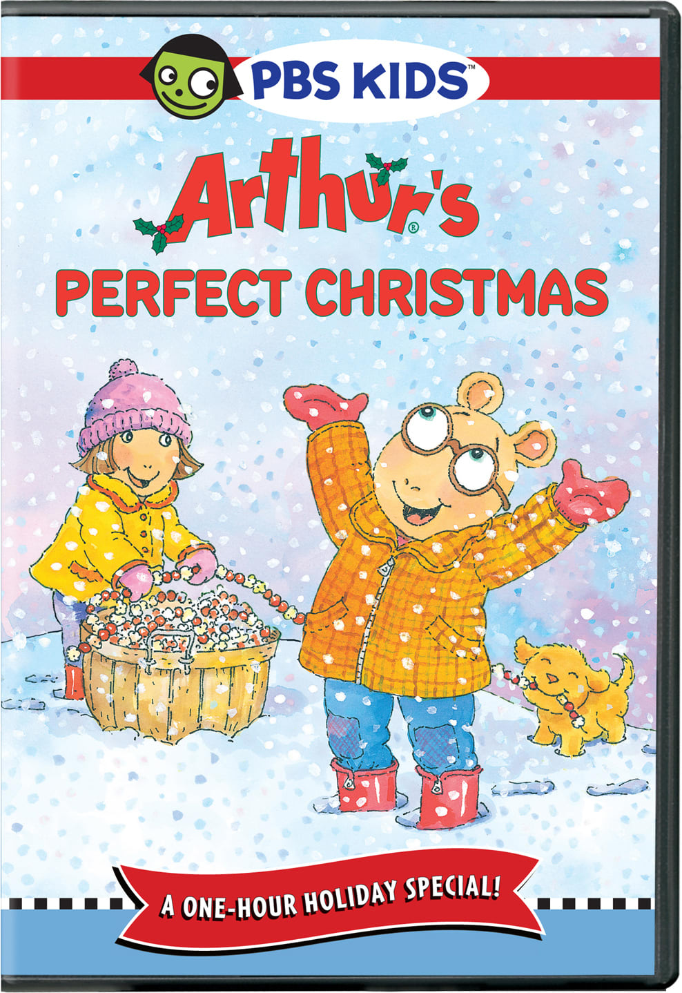 Arthur's Perfect Christmas [DVD]