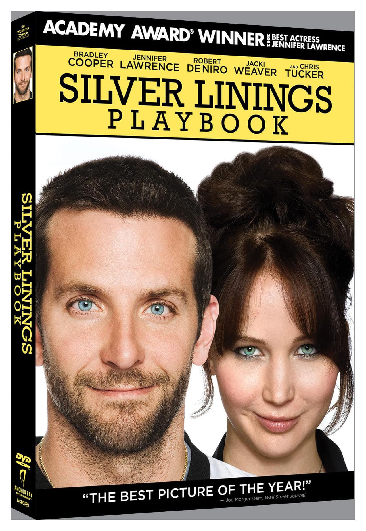 Silver Linings Playbook [DVD]