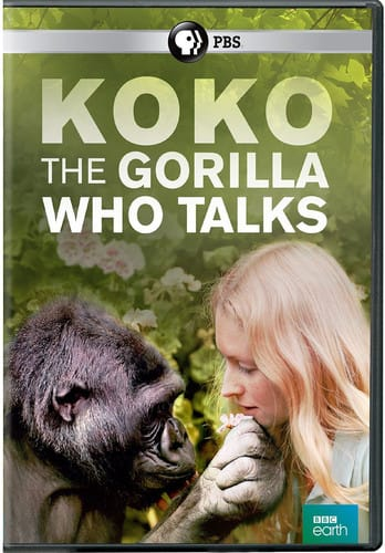 Koko: The Gorilla Who Talks [DVD]